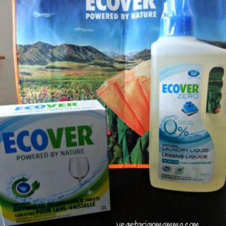 Review: Ecover Products