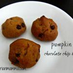 Pumpkin Chocolate Chip Bites – #glutenfree