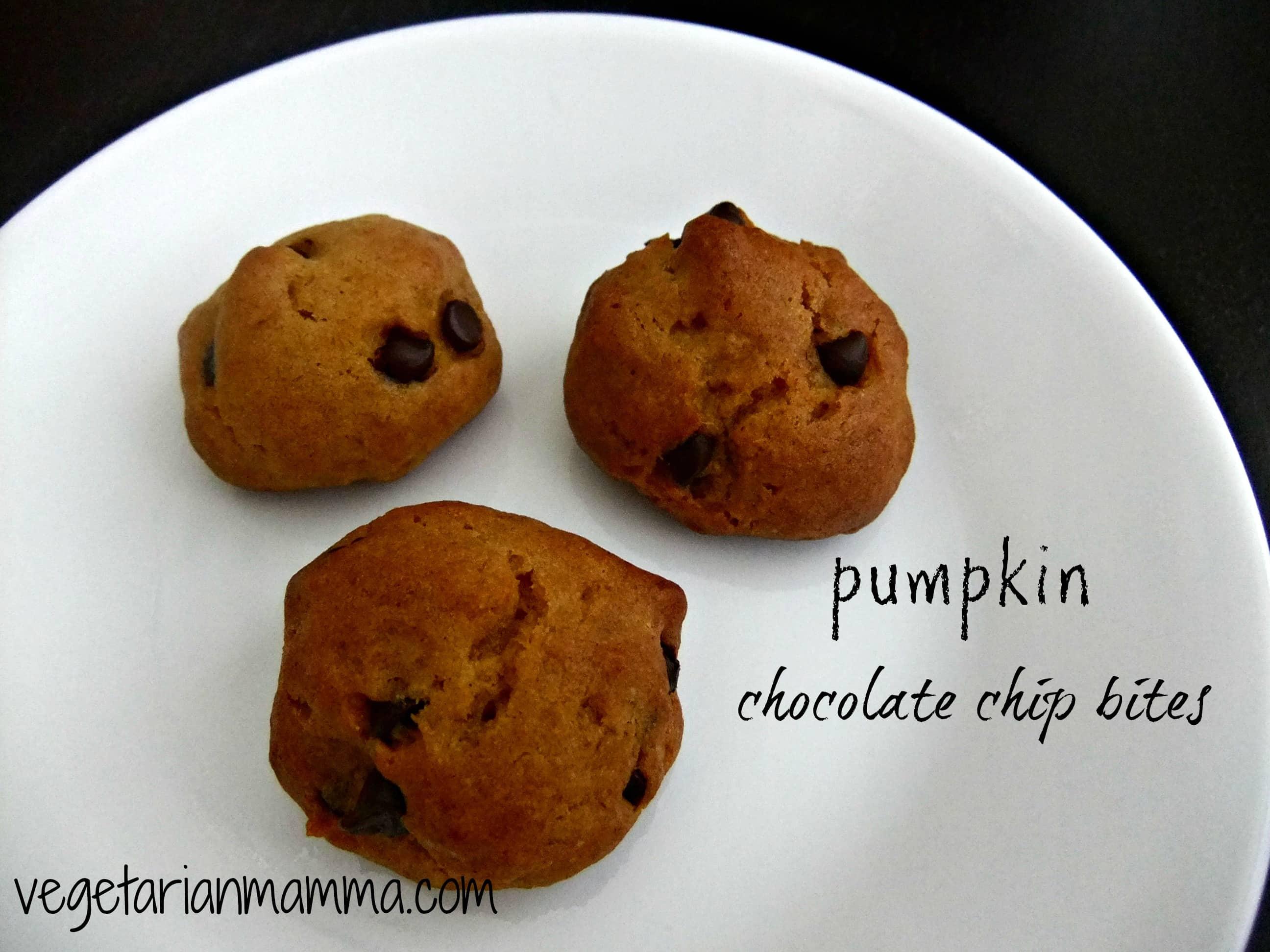 pumpkin chocolate chip bites gluten free