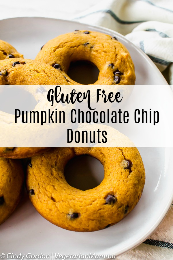 Gluten Free Pumpkin Chocolate Chip Donuts 10