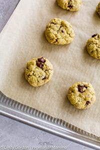 Soft Gluten Free Chocolate Chip Cookies