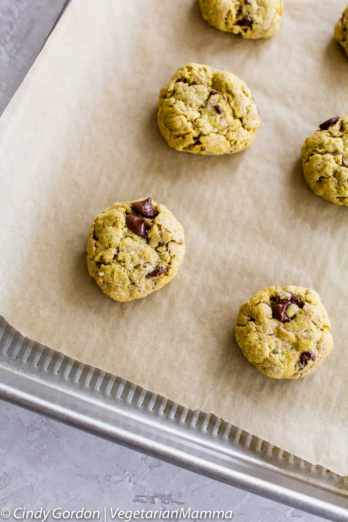 Soft Gluten Free Chocolate Chip Cookies