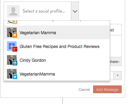 A review of CoSchedule @vegetarianmamma.com
