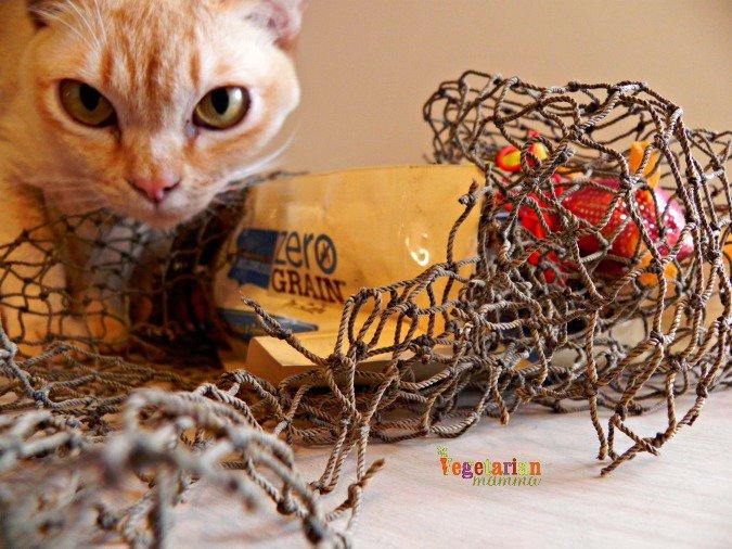 Nutrish Zero Grain Cat Food Review