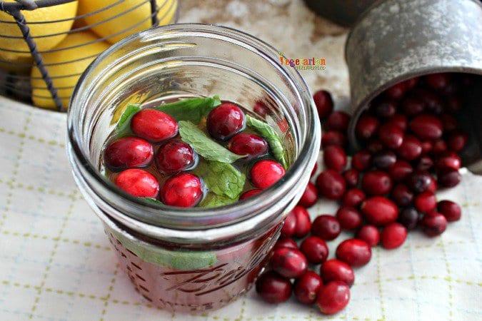 Cranberry Mint Tea @VegetarianMamma.com #mini #milostea #cranberry