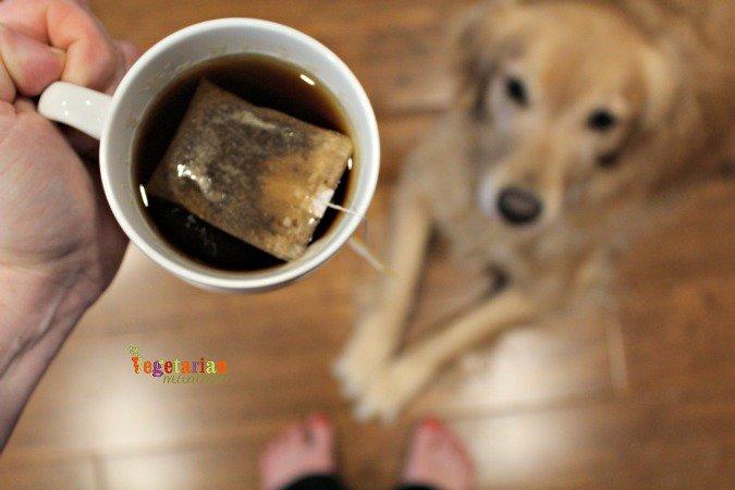 Lipton Tea Party @Vegetarianmamma.com #GiaTheDog