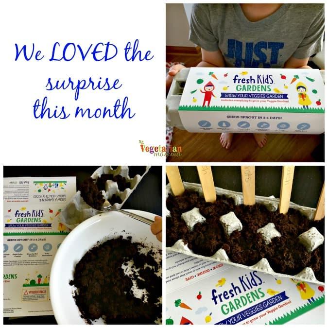 Snack Happy Boxes @VegetarianMamma.com - April Surprise