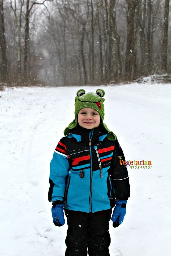 Cabin Fever - Cave Hill Cabins Visit @vegetarianmamma.com - Fresh Snow