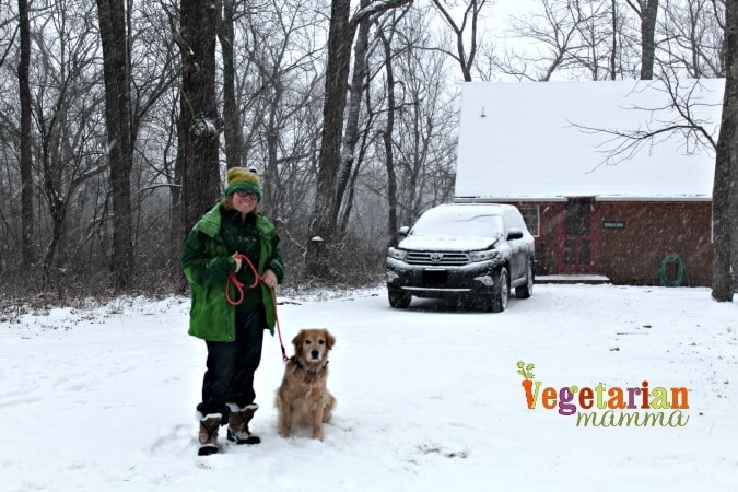 Cabin Fever - Cave Hill Cabins Visit @vegetarianmamma.com - The Cabin