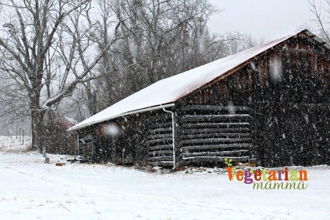 Cabin Fever - Cave Hill Cabins Visit @vegetarianmamma.com - let it snow