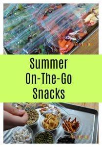 summer on the go snac