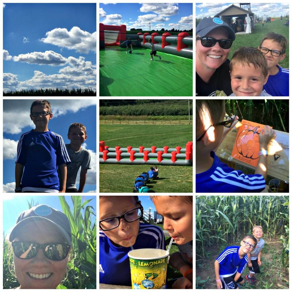A collage of photos from a family visit to the apple orchard