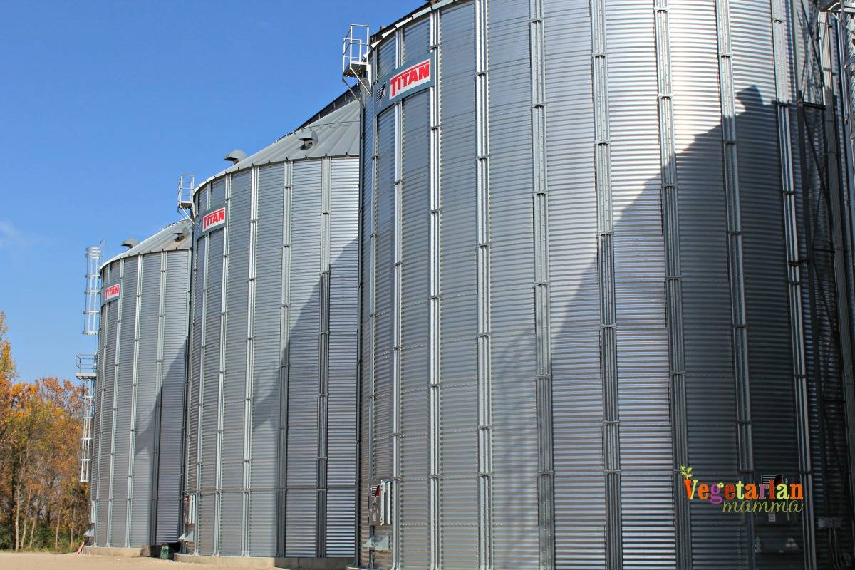 seed-to-sunbutter-vegetarianmamma-com-storage
