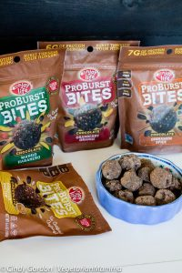 Enjoy Life Foods ProBurst Bites – New Product Alert!