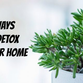 11 Ways to Detox Your Home
