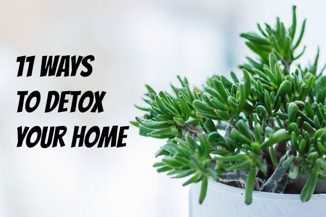 11ways to detox your home