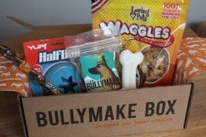 Gia The Dog Shares about Bullymake Monthly Boxes