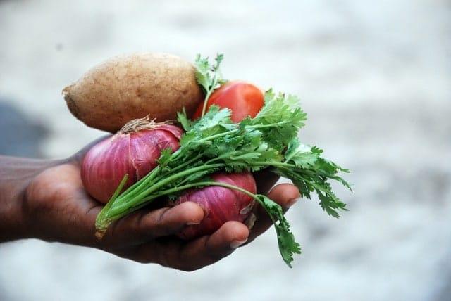 Myths of a Vegetarian Diet