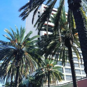 ShiftCon 2017 – Deepening my shade of green!