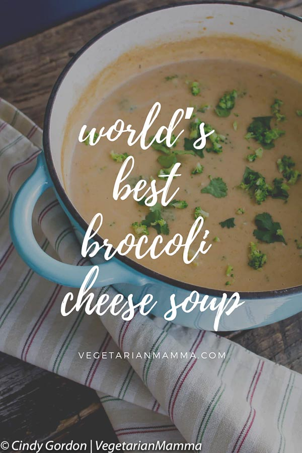 world's best broccoli cheese soup