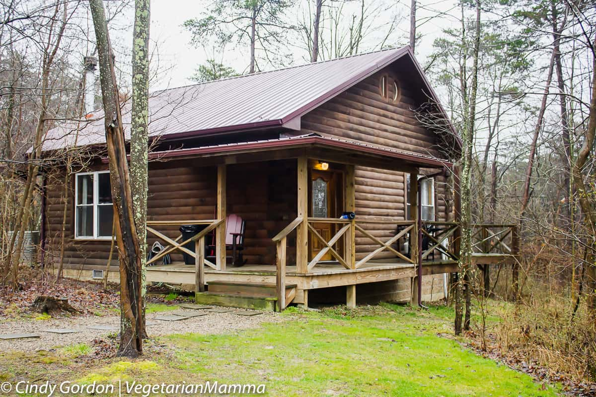 hills spa strongwolf in inn cabins hocking at friendly cedar rooms pet wolf strong cabin falls