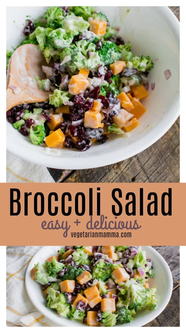The BEST Broccoli Cranberry Salad is just minutes away from being enjoyed. Whip together this mouthwatering broccoli salad that is sweetened with cranberries. #broccolicranberry #broccolisalad