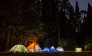 Camping Etiquette When Camping With Your Pet