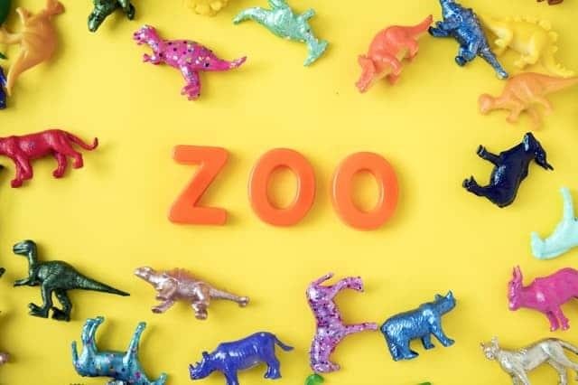 Visit the zoo in Columbus Ohio