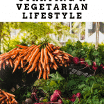 Tips to starting the vegetarian lifestyle