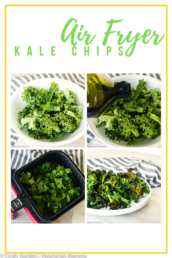 Air Fryer Kale Chips are a super quick and healthy snack that can be made in under 10 minutes. These air fryer kale chips will become your new favorite air fryer recipe. #airfryerrecipes #kalechips