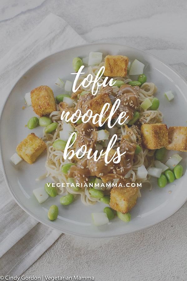 Tofu Noodle Bowl Pin