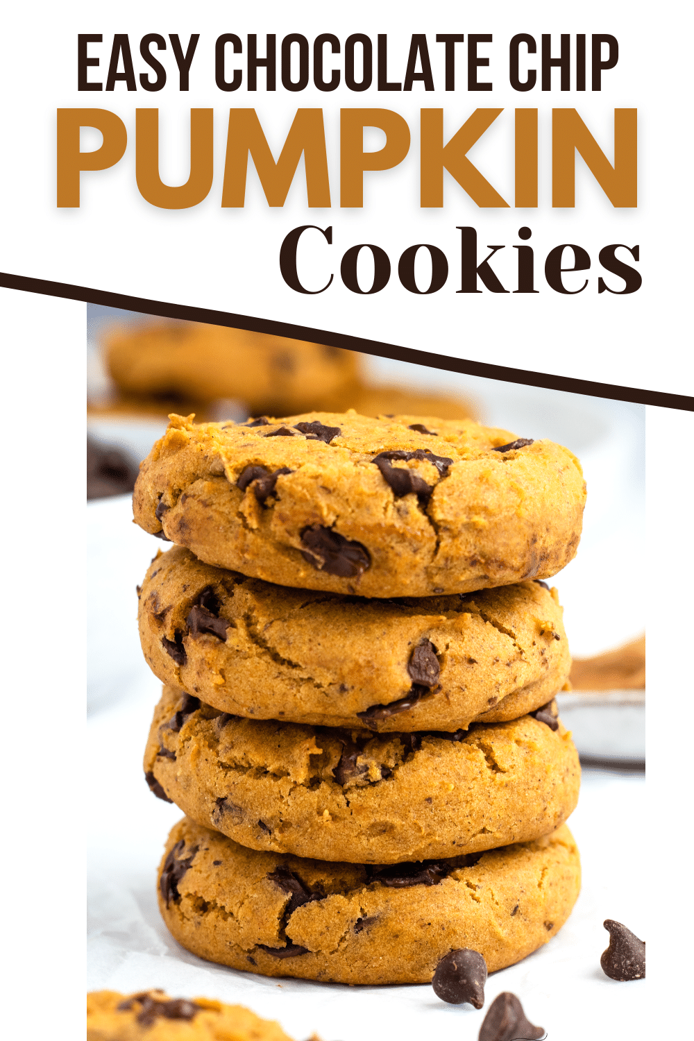 Vegan Pumpkin Chocolate Chip Cookies are the soft and chewy fall cookie of your dreams! These gluten-free cookies are so easy to make with no fancy ingredients required.