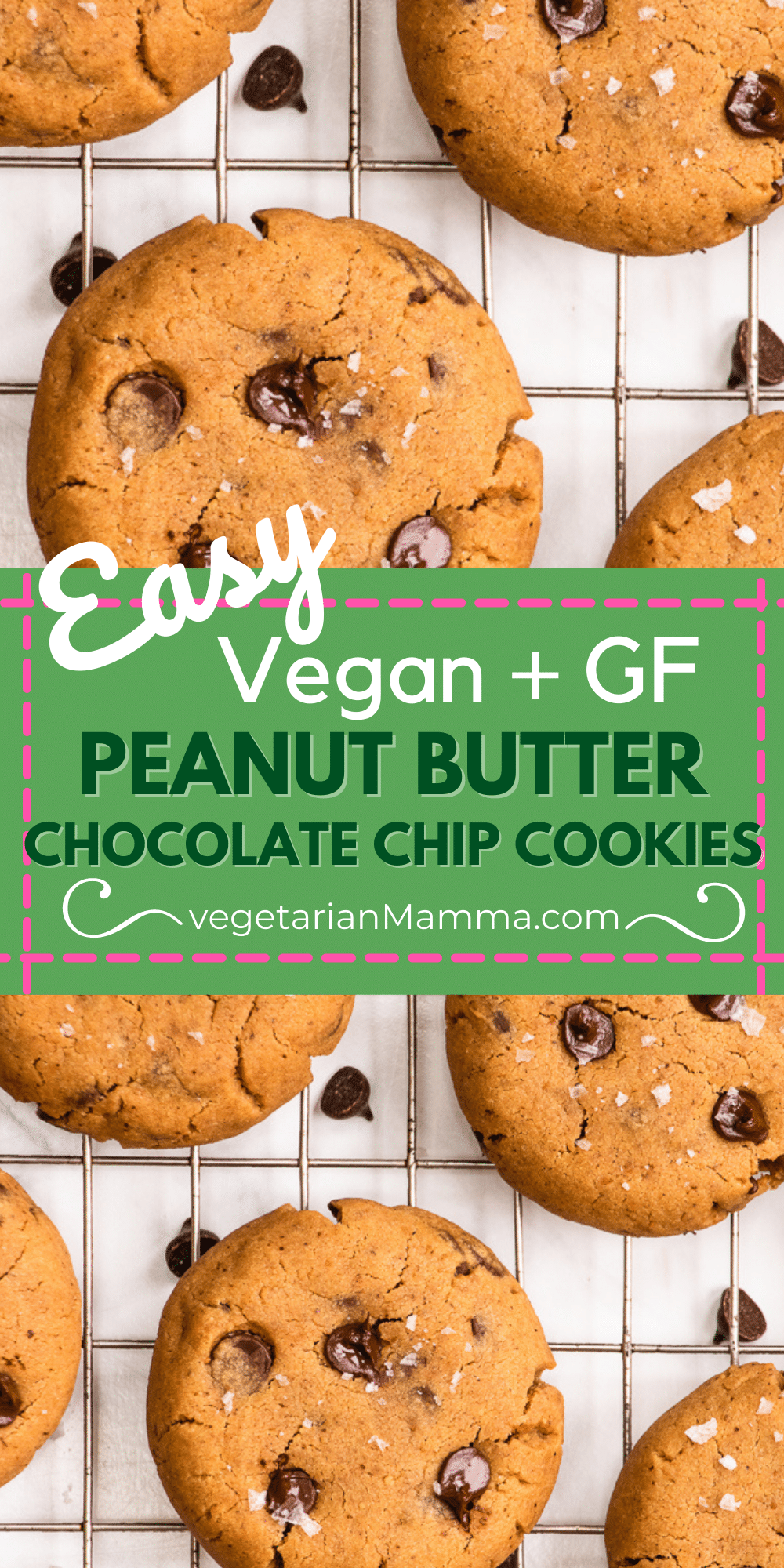 Vegan Peanut Butter Chocolate Chip Cookies are chewy, soft, and packed with chocolate! These are truly the best gluten-free cookies you'll ever make.